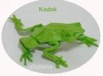 a11 ORIGAMI KODOK2